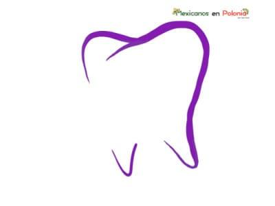 Dental Clinic – Dr n. med. Bogna Zielińska-Kaźmierska