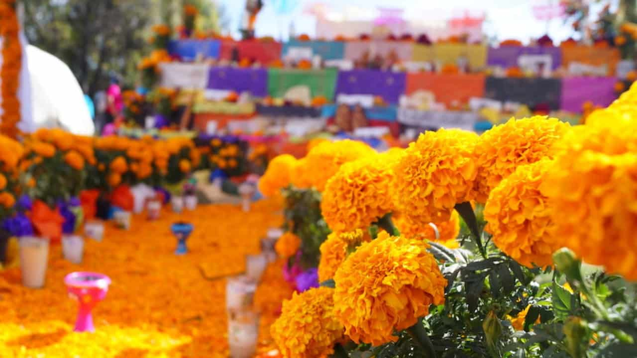 The Mexican Ofrenda | The Meaning of This Tradition | Mexicans in Poland
