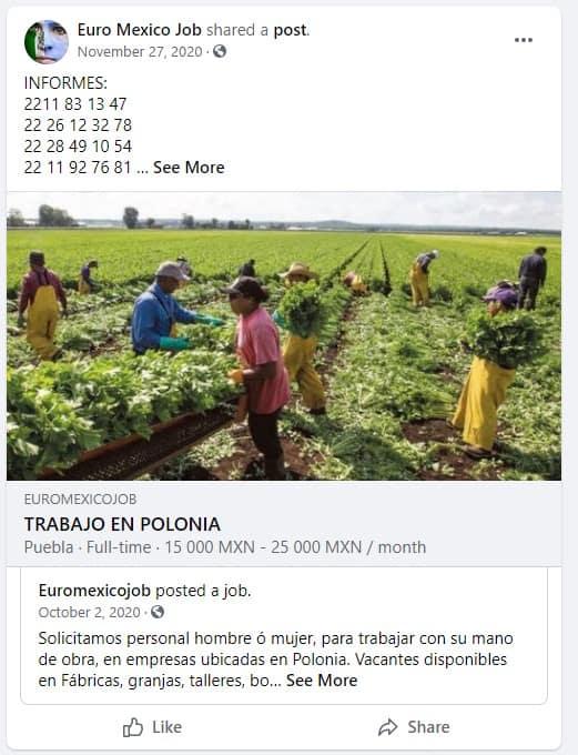 estafa-trabajo-polonia